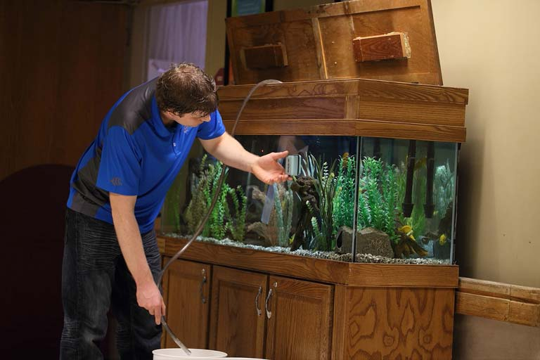 http://www.siouxfallsaquatics.com/wp-content/uploads/2015/02/aquarium-maintenance-02.jpg