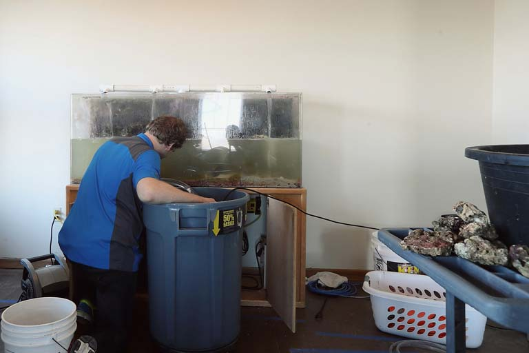 http://www.siouxfallsaquatics.com/wp-content/uploads/2015/02/custom-installation-05.jpg